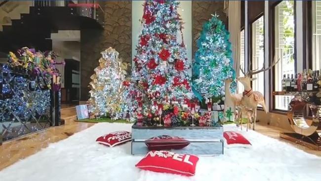 Biệt thự 60 tỷ của Đàm Vĩnh Hưng lung linh trong ngày Giáng sinh - Ảnh 16.