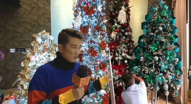 Biệt thự 60 tỷ của Đàm Vĩnh Hưng lung linh trong ngày Giáng sinh - Ảnh 5.
