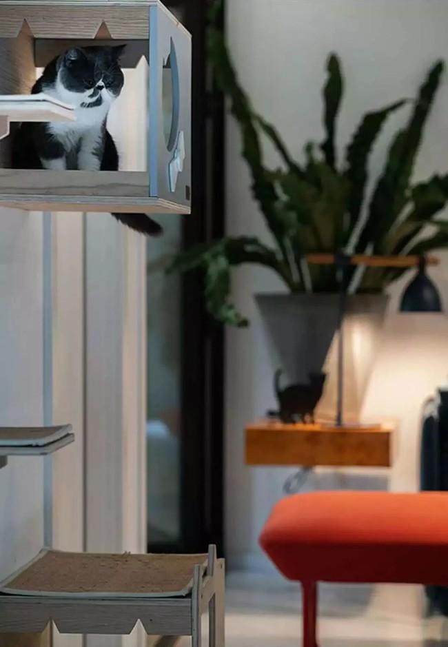 Nhà trong phố tạo cảm giác rộng gấp đôi với cách kết hợp màu táo bạo của vợ chồng trẻ từng du học Hà Lan - Ảnh 13.