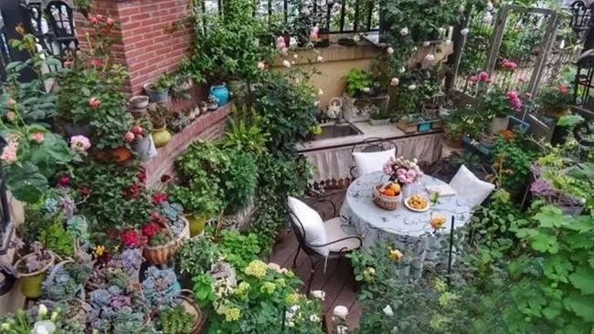 Khu vườn dịu dàng nét xuân, trăm hoa đua nở trên sân thượng 88m² của bà mẹ hai con  - Ảnh 25.