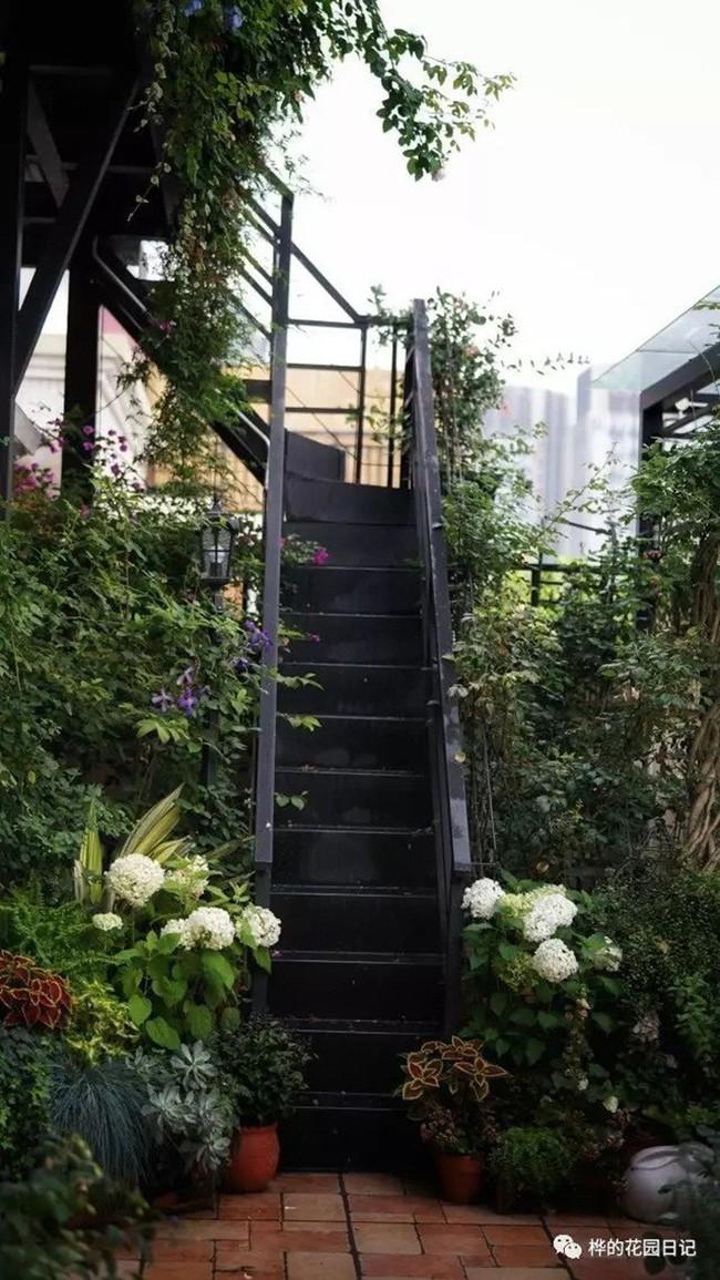 Khu vườn dịu dàng nét xuân, trăm hoa đua nở trên sân thượng 88m² của bà mẹ hai con  - Ảnh 23.
