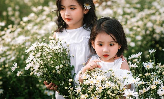 Đánh bại tất cả các bộ ảnh khác, 2 chị em soán ngôi công chúa mùa cúc họa mi năm nay vì quá xinh - Ảnh 3.