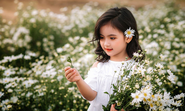 Cánh đồng cúc họa mi trắng xóa như tôn thêm vẻ đẹp của nàng công chúa nhỏ.