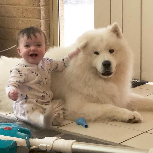 Gia đình nổi như cồn trên mạng xã hội với loạt ảnh chụp hai chị em và cả đàn chó cưng trắng như tuyết - Ảnh 17.