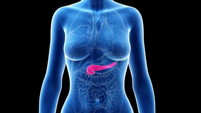 Ung thư tuyến tụy đang tìm đến bạn từ những dấu hiệu sớm này nhưng ít ai nhận ra - Ảnh 1.