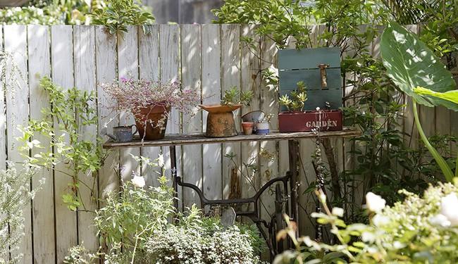 Cô gái trẻ tự tay cải tạo không gian cũ kỹ thành ngôi nhà vườn đẹp lãng mạn với cây xanh - Ảnh 13.