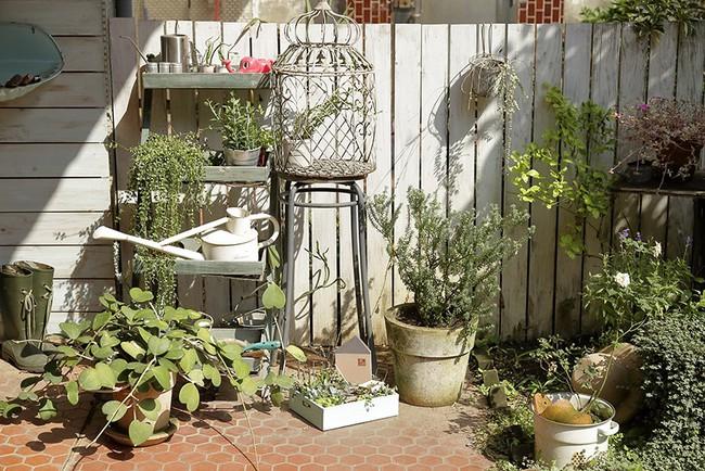 Cô gái trẻ tự tay cải tạo không gian cũ kỹ thành ngôi nhà vườn đẹp lãng mạn với cây xanh - Ảnh 12.