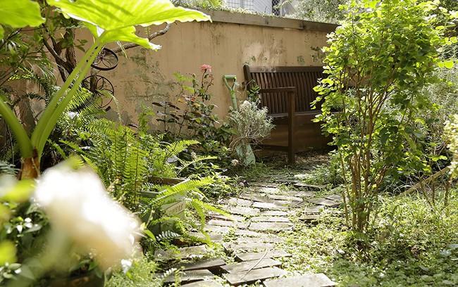 Cô gái trẻ tự tay cải tạo không gian cũ kỹ thành ngôi nhà vườn đẹp lãng mạn với cây xanh - Ảnh 14.