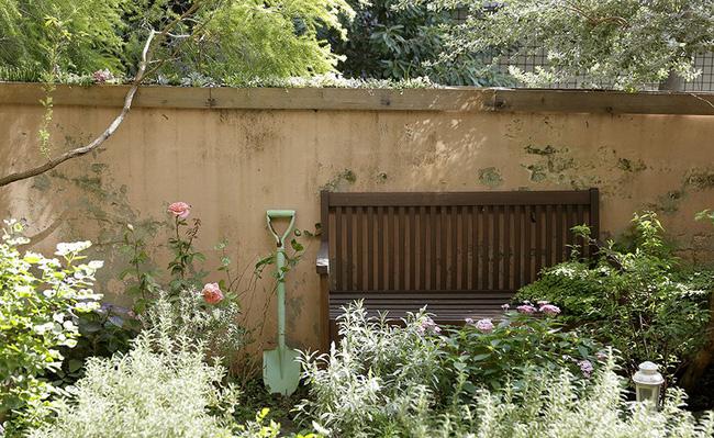 Cô gái trẻ tự tay cải tạo không gian cũ kỹ thành ngôi nhà vườn đẹp lãng mạn với cây xanh - Ảnh 17.