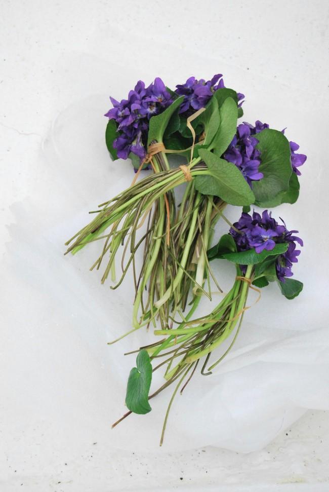Cách cắm hoa Violet dễ ợt ai cũng có thể tự tay làm được để trang trí nhà đón Tết - Ảnh 2.