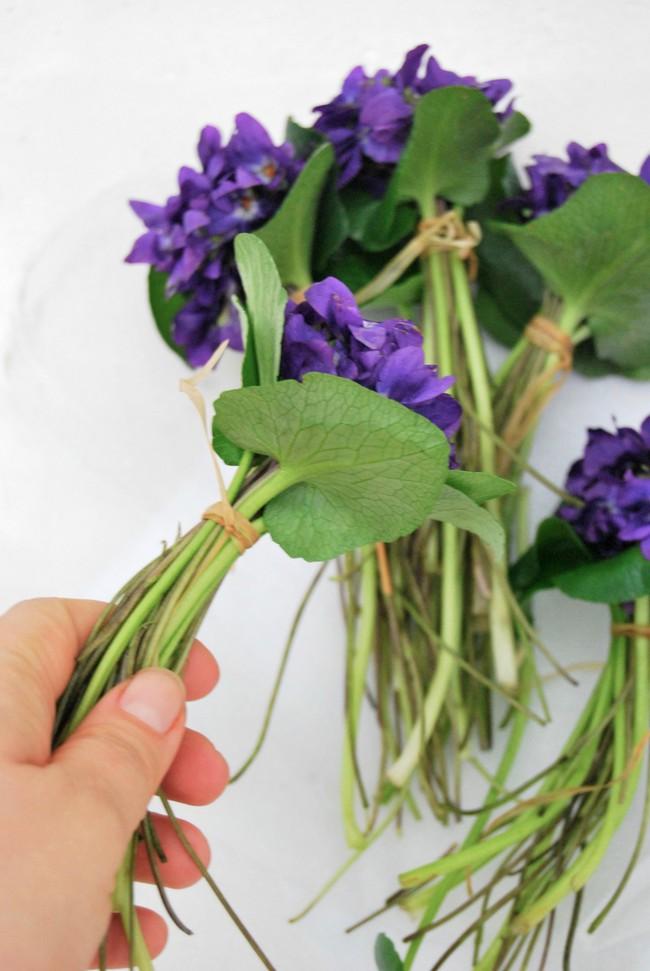 Cách cắm hoa Violet dễ ợt ai cũng có thể tự tay làm được để trang trí nhà đón Tết - Ảnh 1.