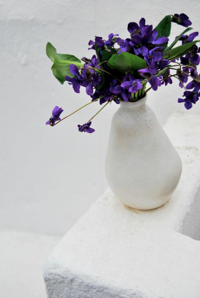 Cách cắm hoa Violet dễ ợt ai cũng có thể tự tay làm được để trang trí nhà đón Tết - Ảnh 3.