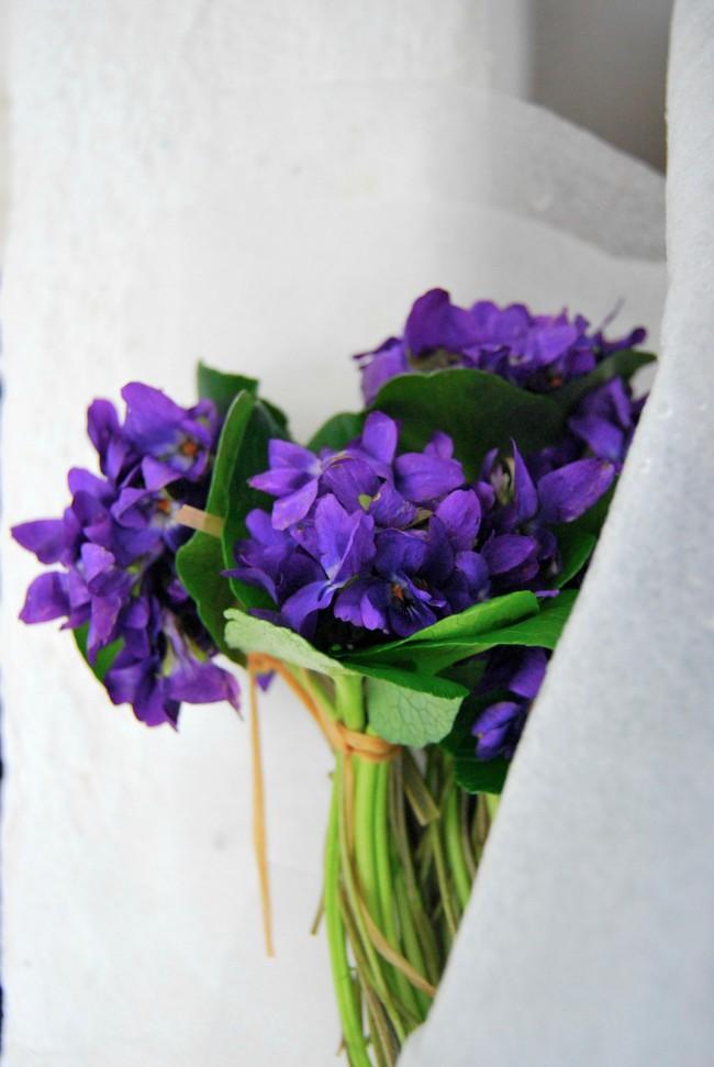 Cách cắm hoa Violet dễ ợt ai cũng có thể tự tay làm được để trang trí nhà đón Tết - Ảnh 8.