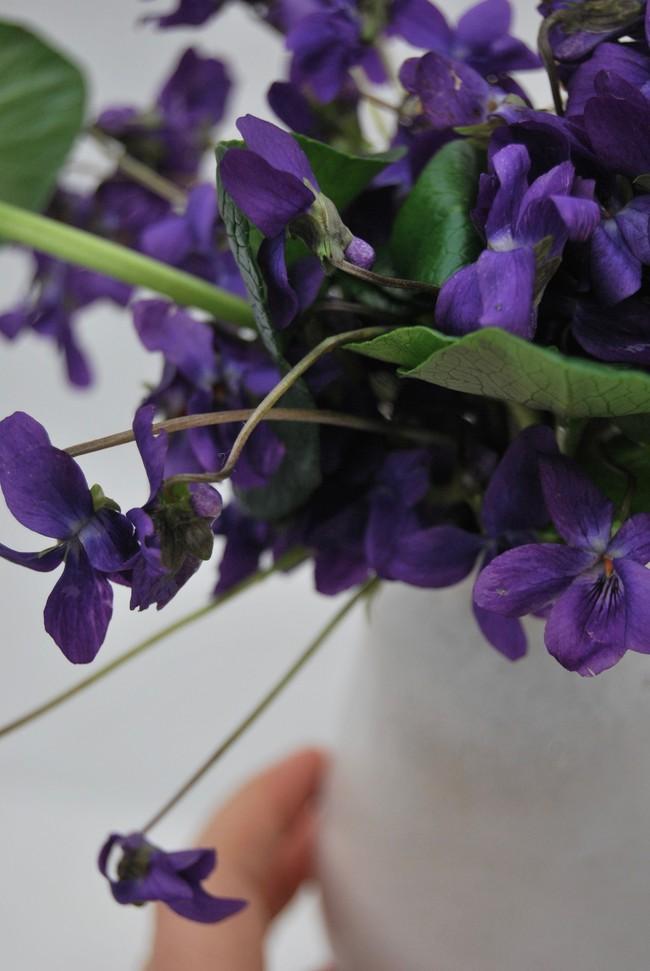 Cách cắm hoa Violet dễ ợt ai cũng có thể tự tay làm được để trang trí nhà đón Tết - Ảnh 6.