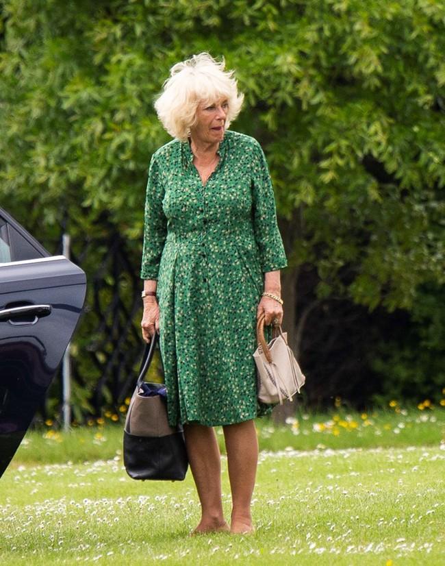 13 năm sau khi lấy Thái tử, bà Camilla chưa một lần được gọi là Công nương, cũng không được thừa kế tước vị từ Công nương Diana quá cố - Ảnh 5.