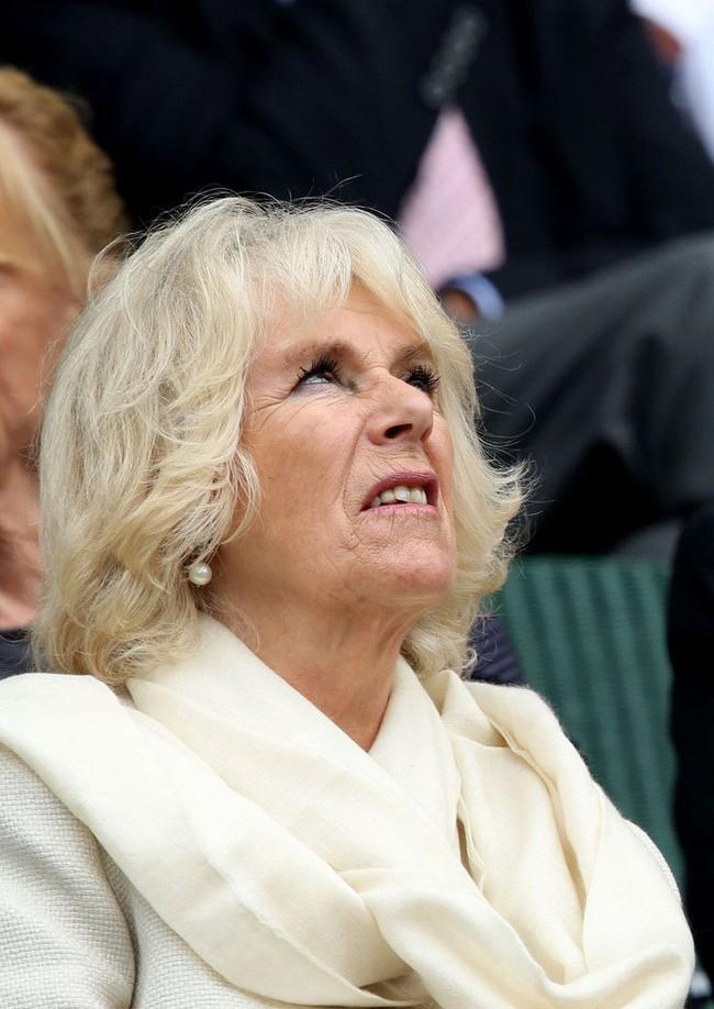 Lần đầu hé lộ những bí mật gây sốc về bà Camilla, người phụ nữ hoàng gia đang bị cả thế giới ghét bỏ - Ảnh 1.