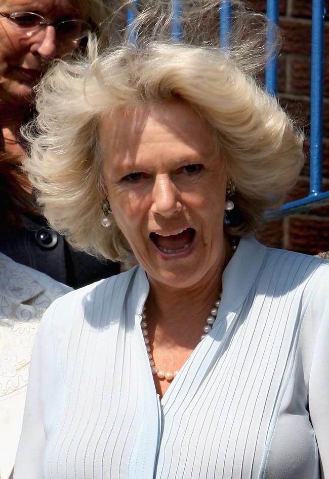 Lần đầu hé lộ những bí mật gây sốc về bà Camilla, người phụ nữ hoàng gia đang bị cả thế giới ghét bỏ - Ảnh 3.