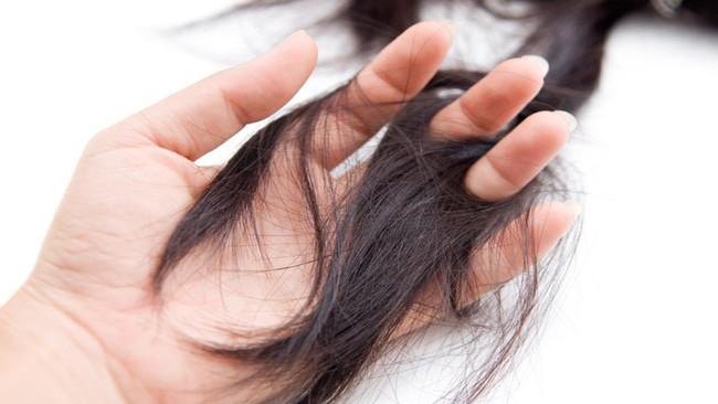 Thoát khỏi tình trạng vuốt tóc thôi cũng ra cả búi với 6 loại gầu gội ngăn rụng tóc được các chuyên gia đánh giá rất cao trên Amazon - Ảnh 2.