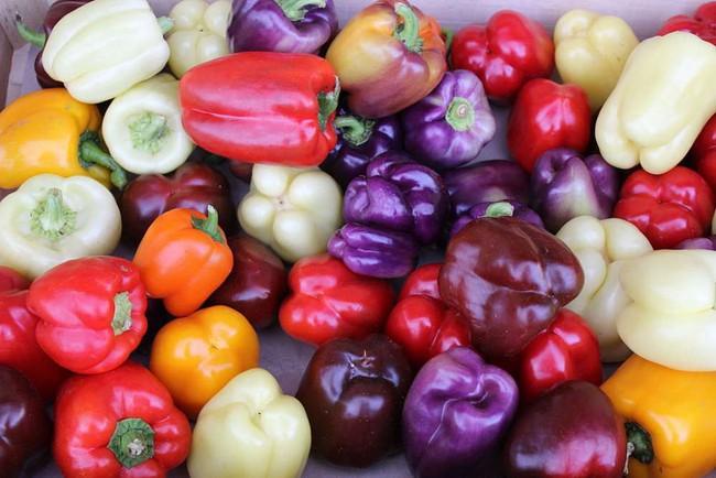 Cư dân mạng mới phát hiện ra sự thật kinh ngạc về màu sắc của ớt chuông: Xanh đỏ tím vàng đủ cả, nhưng... - Ảnh 1.