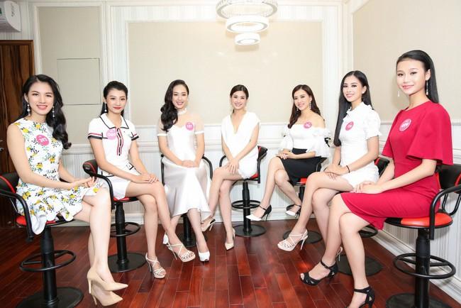 Sự thật về đôi giày mà Trần Tiểu Vy cứ diện đi diện lại khi tham dự Hoa hậu Việt Nam - Ảnh 5.