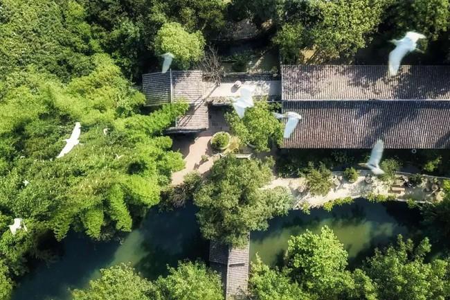 Cuộc sống ngỡ như là mơ của gia đình sống trong ngôi nhà gỗ 400m² bên khu rừng rộng 30 mẫu sau khi quyết tâm rời bỏ thành phố - Ảnh 27.