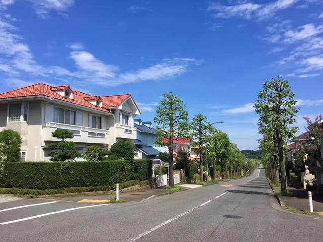Ngôi nhà nhỏ lãng mạn của đôi vợ chồng trẻ từ bỏ cuộc sống ở Tokyo, Nhật Bản để về ngoại ô sinh sống - Ảnh 1.