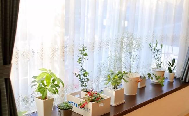 Ngôi nhà nhỏ lãng mạn của đôi vợ chồng trẻ từ bỏ cuộc sống ở Tokyo, Nhật Bản để về ngoại ô sinh sống - Ảnh 23.