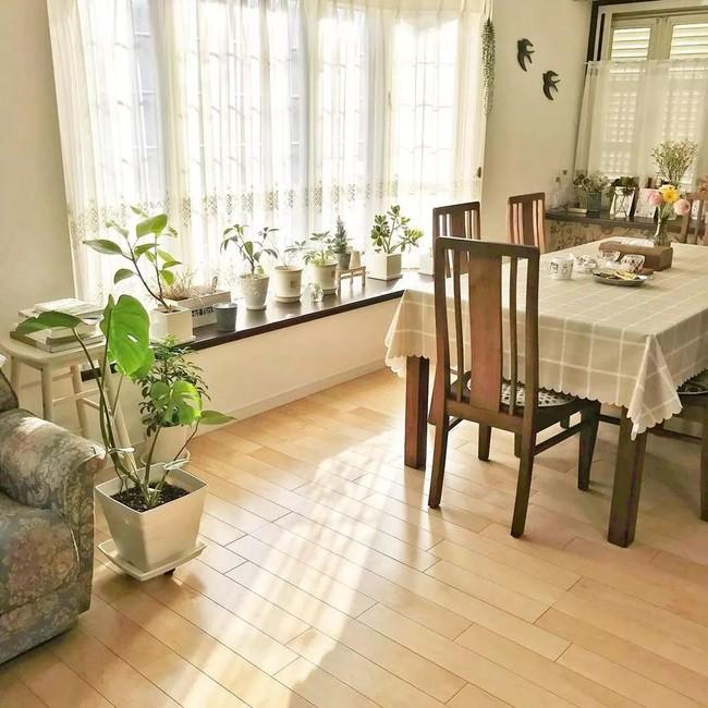 Ngôi nhà nhỏ lãng mạn của đôi vợ chồng trẻ từ bỏ cuộc sống ở Tokyo, Nhật Bản để về ngoại ô sinh sống - Ảnh 16.