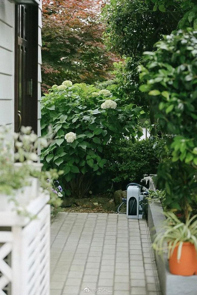 Ngôi nhà nhỏ lãng mạn của đôi vợ chồng trẻ từ bỏ cuộc sống ở Tokyo, Nhật Bản để về ngoại ô sinh sống - Ảnh 7.