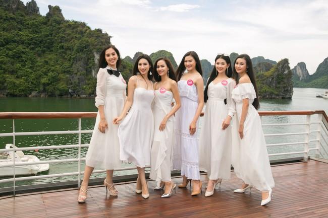 Sự thật về đôi giày mà Trần Tiểu Vy cứ diện đi diện lại khi tham dự Hoa hậu Việt Nam - Ảnh 6.