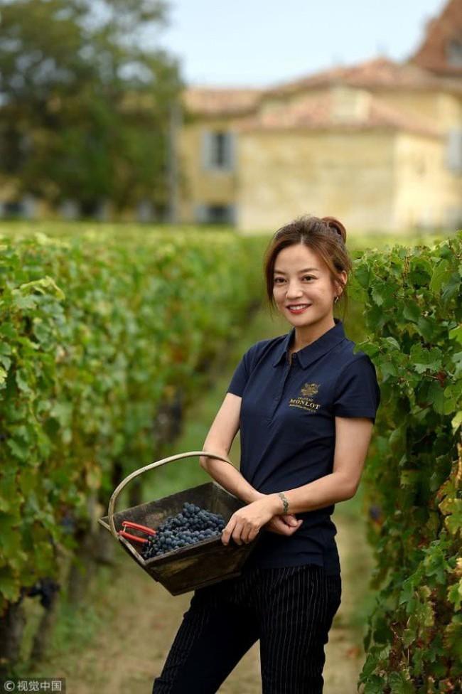 Én nhỏ Triệu Vy xinh đẹp tự tay thu hoạch nho trong khu vườn rộng 7ha của gia đình - Ảnh 10.
