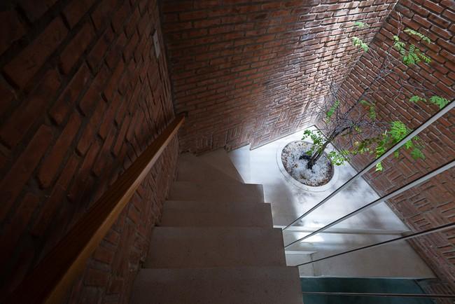 Ngôi nhà 48m² xây trên đất xéo có hàng tá nhược điểm nhưng góc nào cũng khiến người ta xuýt xoa bởi quá hợp lý ở Sài Gòn - Ảnh 5.