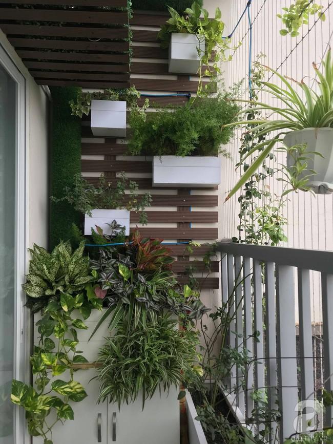 Căn hộ 88,5m² vô cùng ấm cúng được hoàn thiện bằng tất cả tâm huyết của cặp vợ chồng thích trồng hoa và đọc sách ở Hà Nội - Ảnh 28.