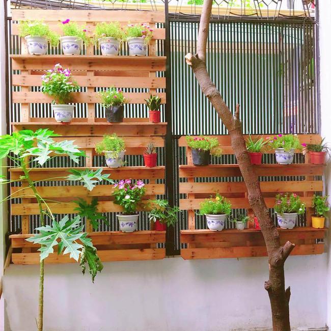 Khu vườn trên sân thượng nhỏ nhắn nhưng xanh mát mắt của bà mẹ hai con xinh đẹp Elly Trần - Ảnh 8.