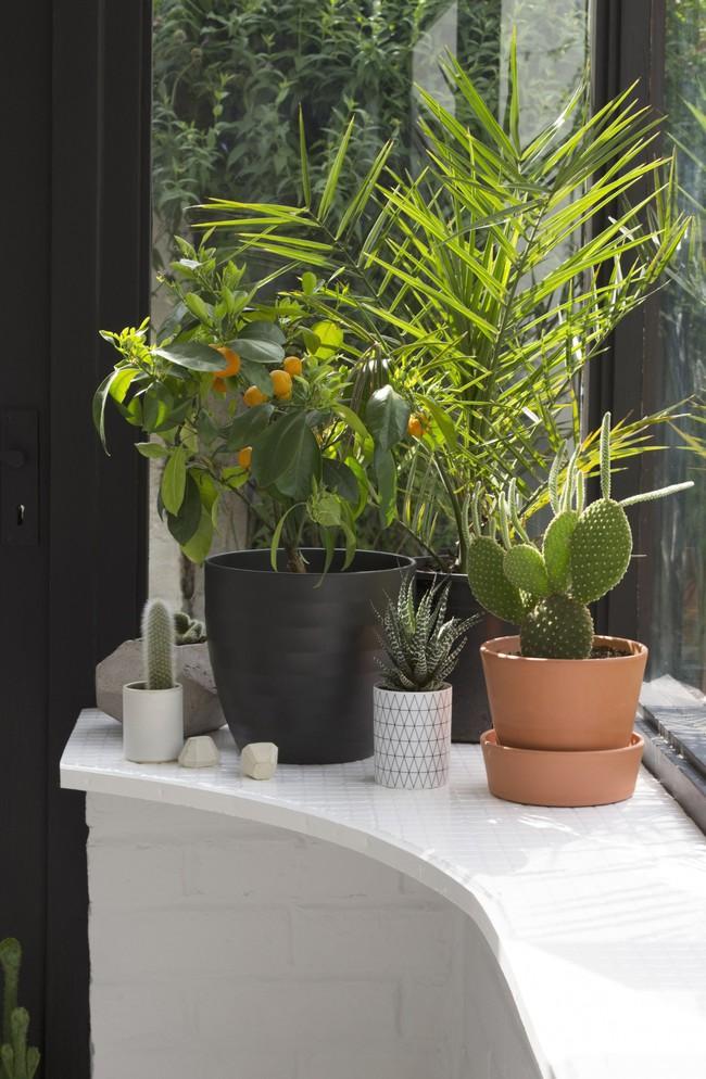 Sau cải tạo, căn phòng cũ nhạt nhẽo đã biến thành góc thư giãn ngập tràn ánh nắng với phong cách Scandinavian  - Ảnh 5.