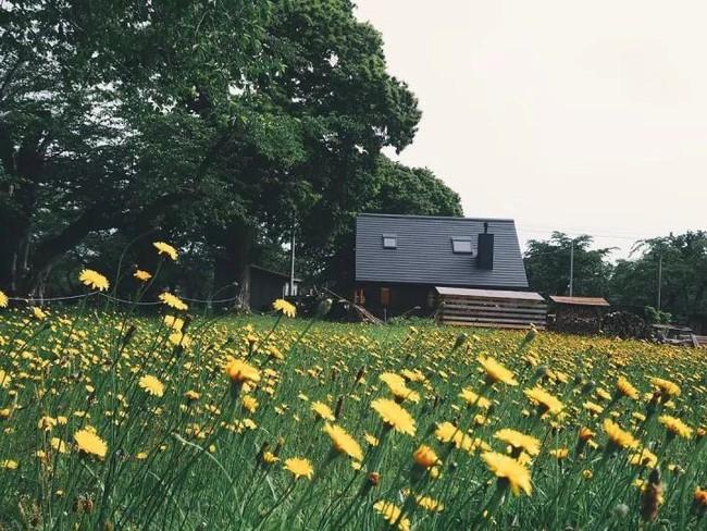 Cuộc sống yên bình bên ngôi nhà gỗ của gia đình 4 người ở vùng nông thôn Nhật Bản - Ảnh 2.