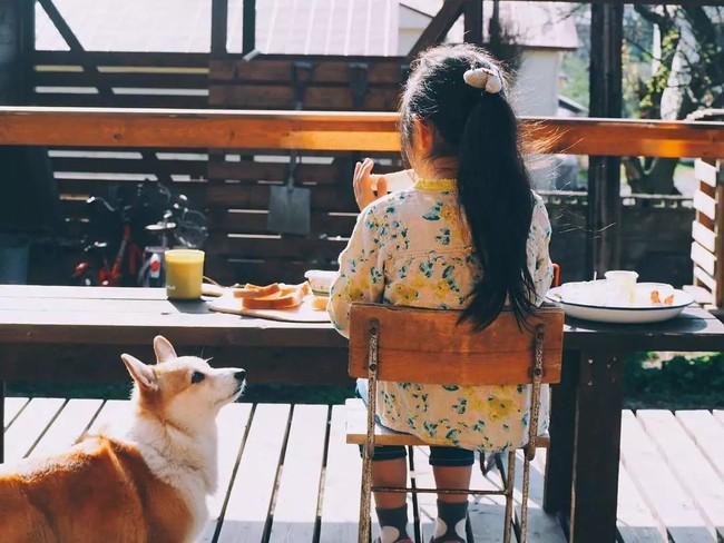 Cuộc sống yên bình bên ngôi nhà gỗ của gia đình 4 người ở vùng nông thôn Nhật Bản - Ảnh 23.