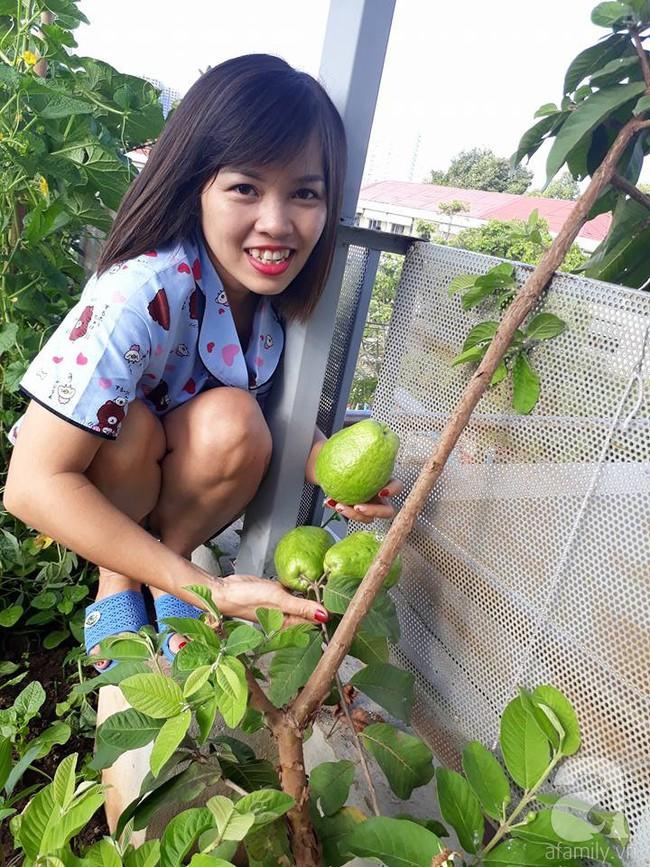 Khu vườn sân thượng tuy nhỏ nhưng bạt ngàn rau sạch của người chồng dồn sức chăm bón cho vợ con ở Vũng Tàu - Ảnh 14.