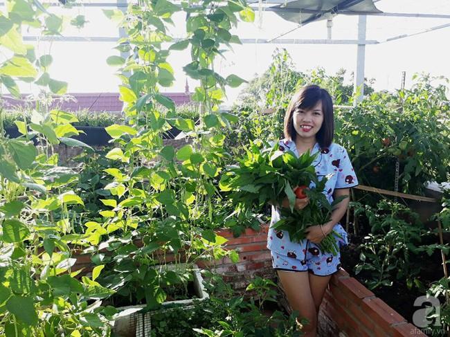 Khu vườn sân thượng tuy nhỏ nhưng bạt ngàn rau sạch của người chồng dồn sức chăm bón cho vợ con ở Vũng Tàu - Ảnh 2.