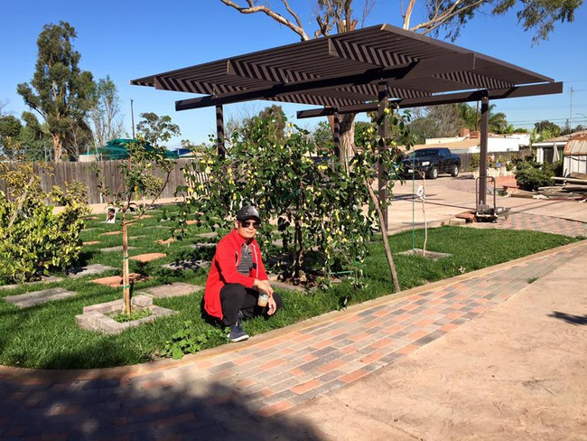 Khu vườn đủ các loại cây quả mang hương vị quê nhà của ca sĩ Bằng Kiều ở Mỹ - Ảnh 1.