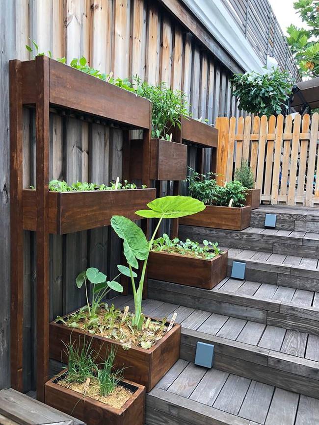 Khu vườn nhỏ xanh mát với rau sạch và hoa hồng trong biệt thự triệu đô của Tăng Thanh Hà - Ảnh 10.