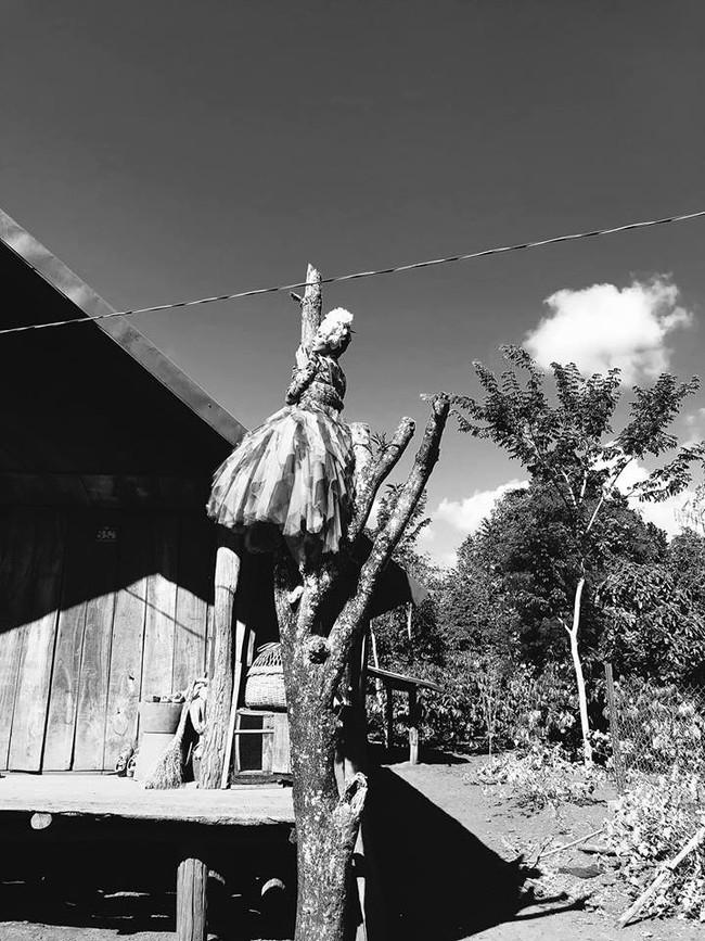 HHen Niê chịu khó mặc đầm dạ hội hoành tráng trèo cây cao, tạo dáng cực phiêu dưới cái nắng của núi rừng Đắk Lắk - Ảnh 3.