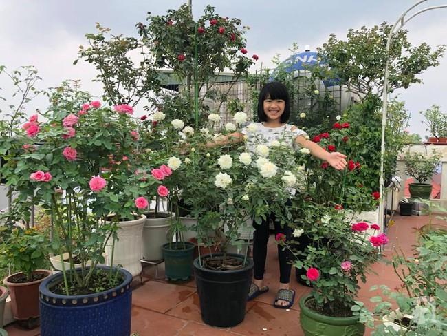 Người phụ nữ tận hưởng hạnh phúc trọn vẹn bên vườn hồng trên cao giữa lòng Hà Nội - Ảnh 2.