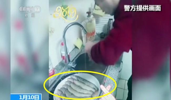 Mua cá về mổ còn quay video tải lên MXH, cặp vợ chồng bị bắt lên đồn cảnh sát vì một lý do không ngờ - Ảnh 1.
