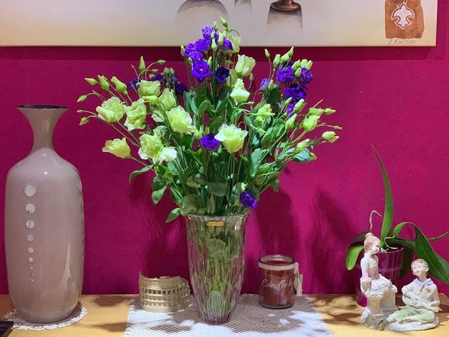 Những loại hoa vừa làm đẹp nhà vừa mang may mắn, tài lộc cho năm mới - Ảnh 12.