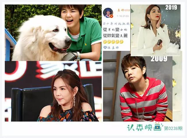 Sao Trung Thử thách 10 năm: Lâm Chí Dĩnh trẻ mãi không già, thành viên nhóm nhạc SHE từ tomboy thành mỹ nhân - Ảnh 4.