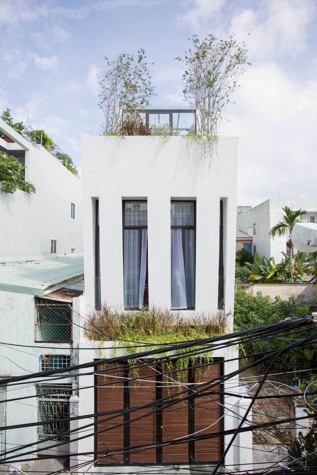 25 15463962687571669365284 - Ngôi nhà sâu đến 25m nhưng vừa xanh vừa thoáng nhờ hệ giếng trời và vườn đứng cực thông minh ở Đà Nẵng