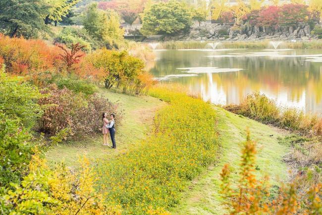 Trọn bộ ảnh cưới ngập tràn sắc vàng mùa thu Hàn Quốc của rapper Tiến Đạt và vợ mới cưới Thụy Vy - Ảnh 9.