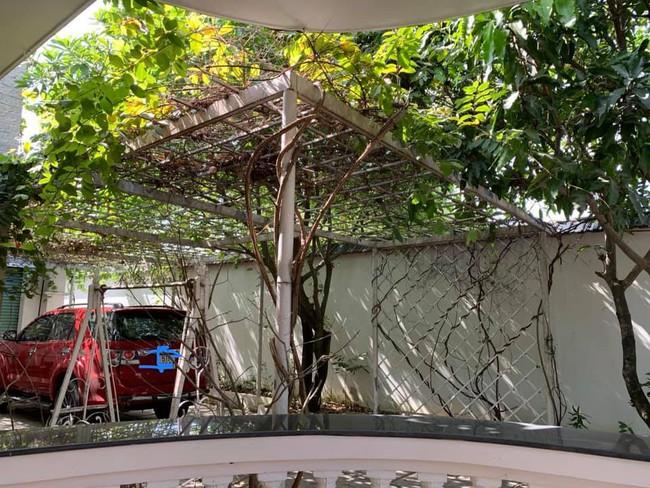 Nhà vườn bình yên và ngập tràn cây ăn quả của diễn viên Việt Trinh ở Bình Dương - Ảnh 3.