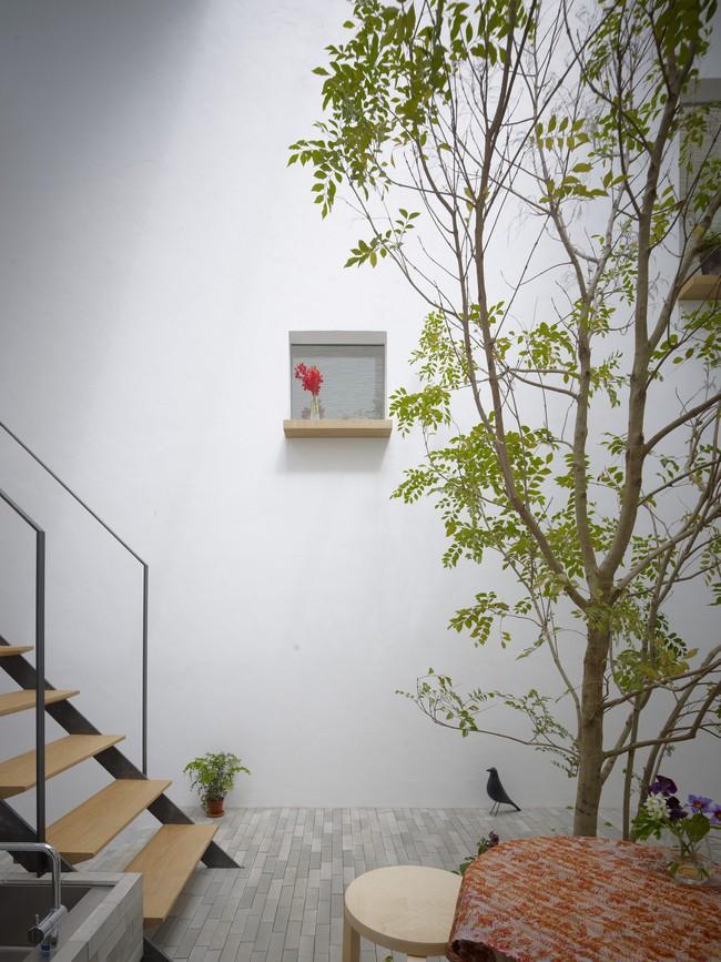 Dành hơn 1/10 diện tích làm giếng trời và sân vườn, ngôi nhà ống ở Nhật này được khen vừa đẹp, vừa lạ - Ảnh 6.